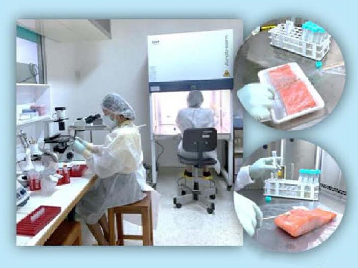'กรมวิทยาศาสตร์การแพทย์' เผย ผลตรวจการปนเปื้อนเชื้อไวรัสโคโรนา 2019 ในอาหารและบรรจุภัณฑ์