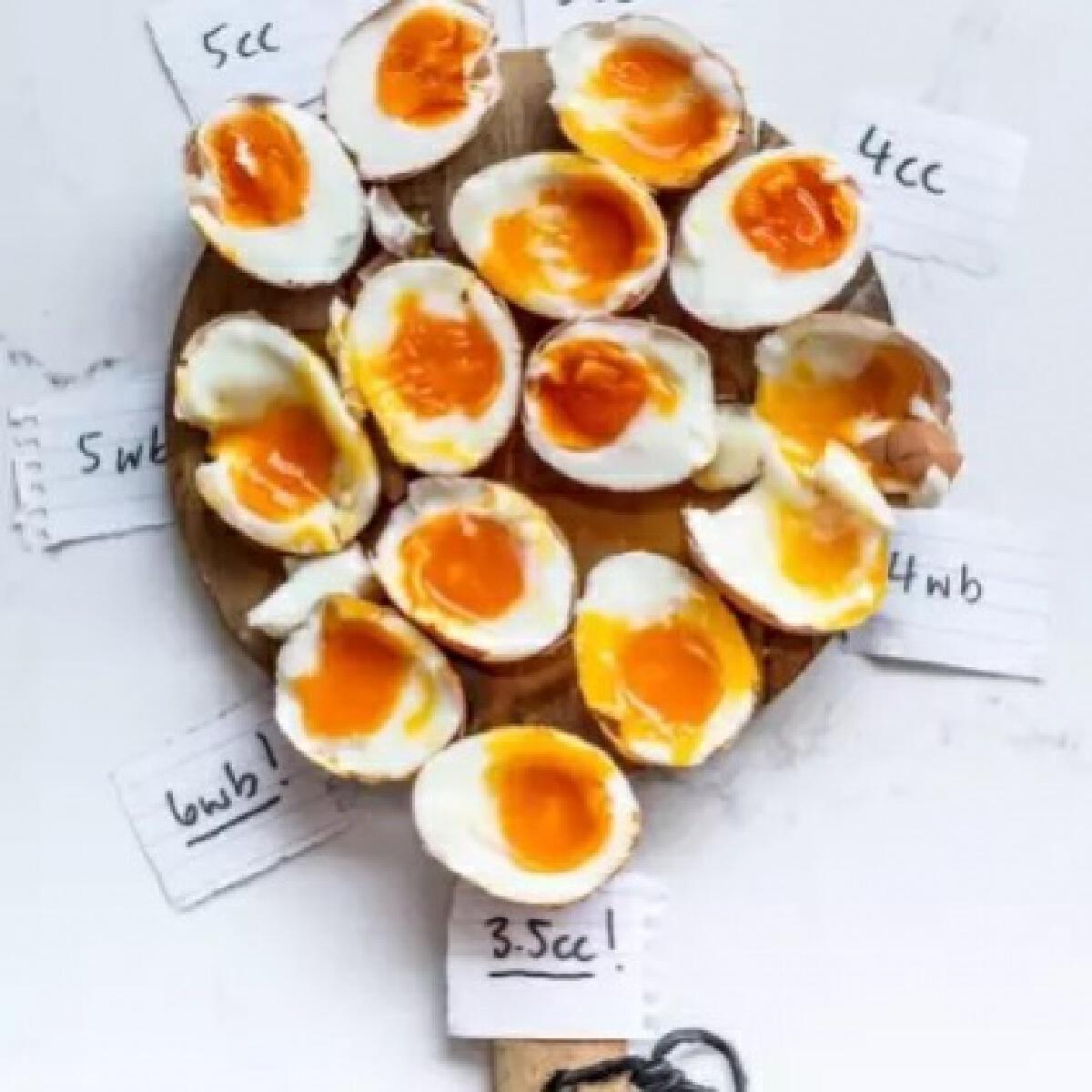 """""""ไข่ต้ม""""ทานแล้ว ช่วยลดน้ำหนักได้ มีผลวิจัย"""