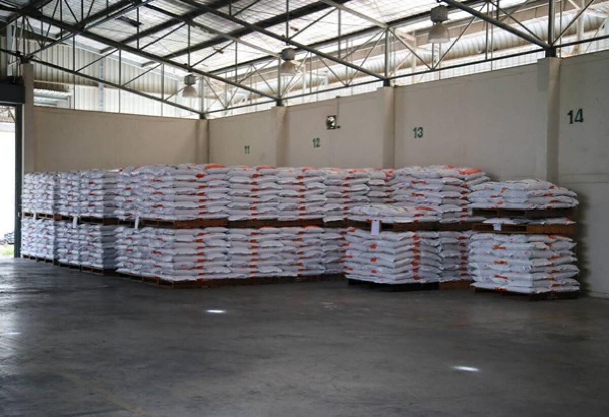 """""""กรมการข้าว""""เร่งเพิ่มศักยภาพการผลิต""""เมล็ดพันธุ์ข้าว""""ให้เพียงพอ ตั้งเป้าผลิตให้ได้ 152,000 ตัน/ปี"""