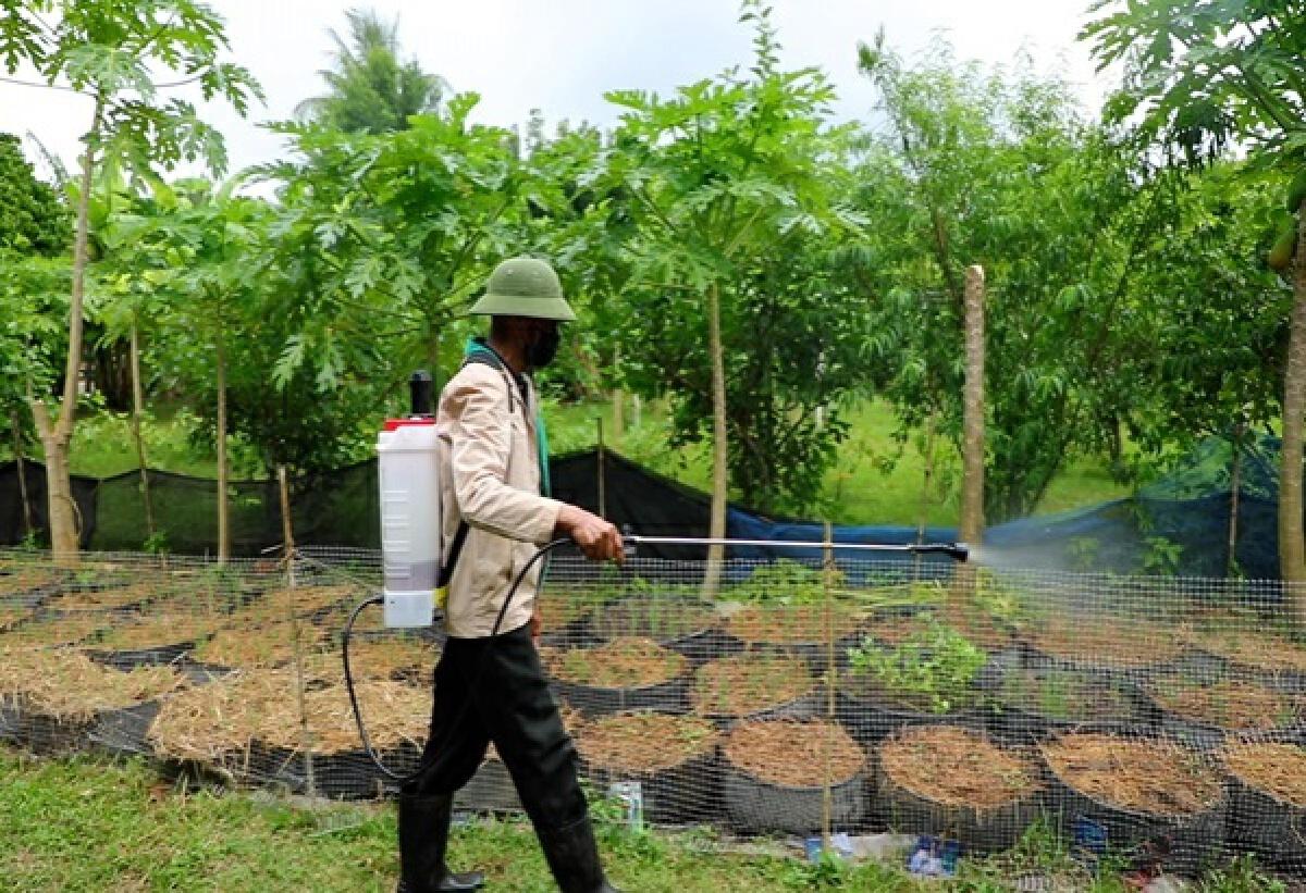 """""""หมอดินอาสา""""ประจำอำเภอเชียงแสน ปรับเปลี่ยนพื้นที่ปลูกพืชเกษตรอินทรีย์ สร้างรายได้งาม"""
