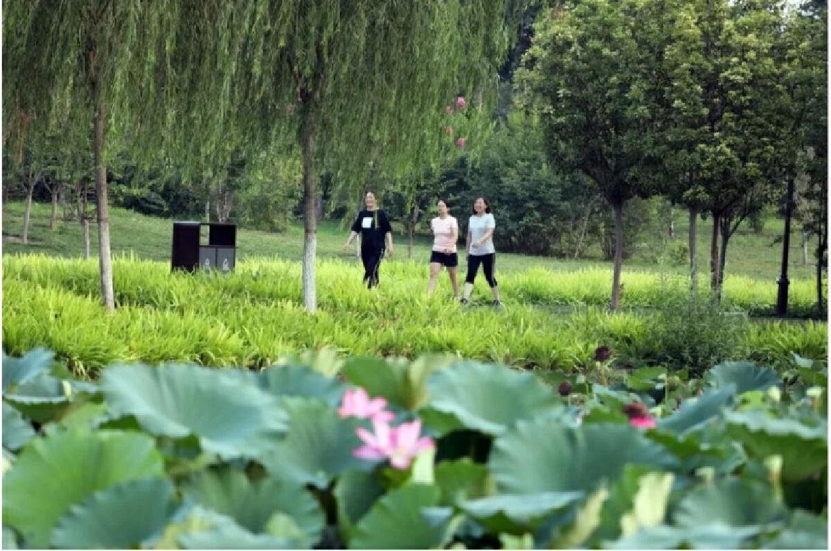 """จีนรุกสร้าง """"สวนระบบนิเวศ"""" ปรับภูมิทัศน์ให้ธรรมชาติอยู่คู่ประชาชน"""