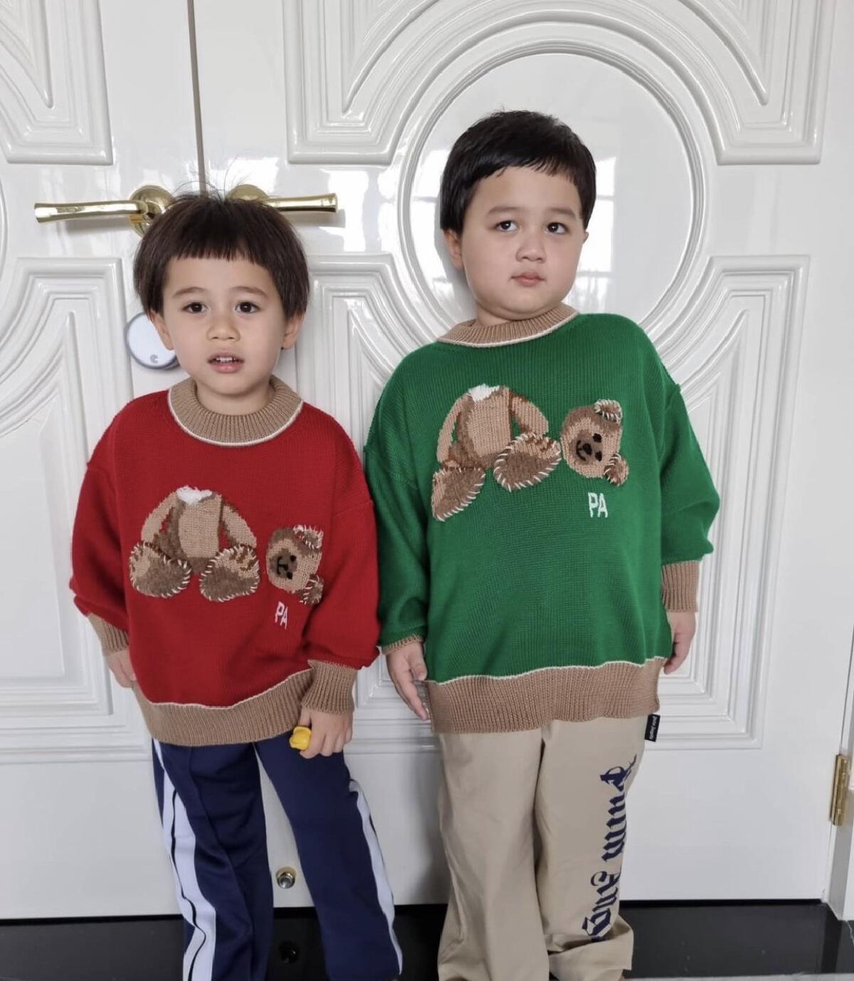 """""""ชมพู่ อารยา"""" เล็งให้ลูกแฝด สายฟ้า-พายุ ดรอปเรียนออนไลน์"""