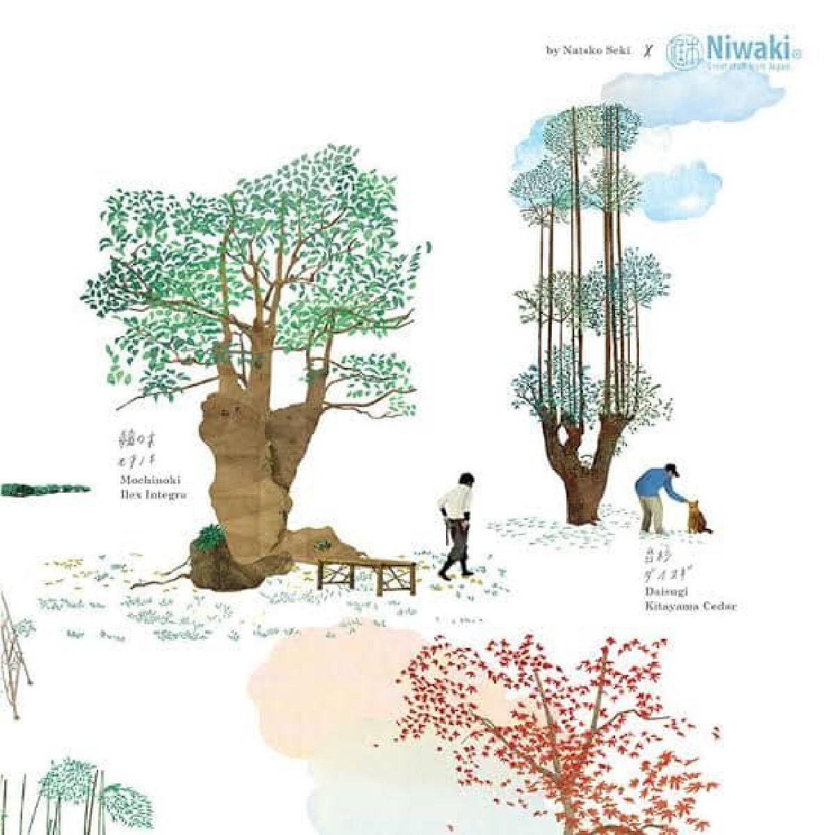 """ไดสุกิ (daisugi) """"เทคนิค""""ญี่ปุ่นตัดต้นไม้ ไม่ต้องโค่นแถมยังโตใหม่ได้อีก"""