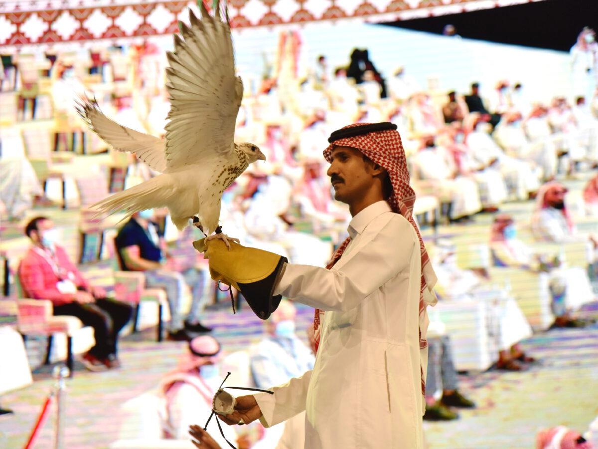 นกเหยี่ยว, ไจร์ฟัลคอน, นกเหยี่ยวที่มีราคาแพงที่สุดในโลก
