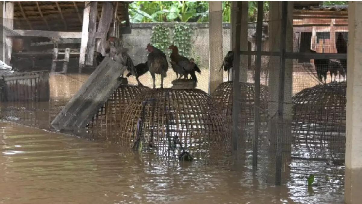 """เตือนระวัง 9 """"โรคติดเชื้อ"""" ร้ายในหน้าฝน อยู่ให้ห่างป้องกันไว้ไม่เสี่ยง"""