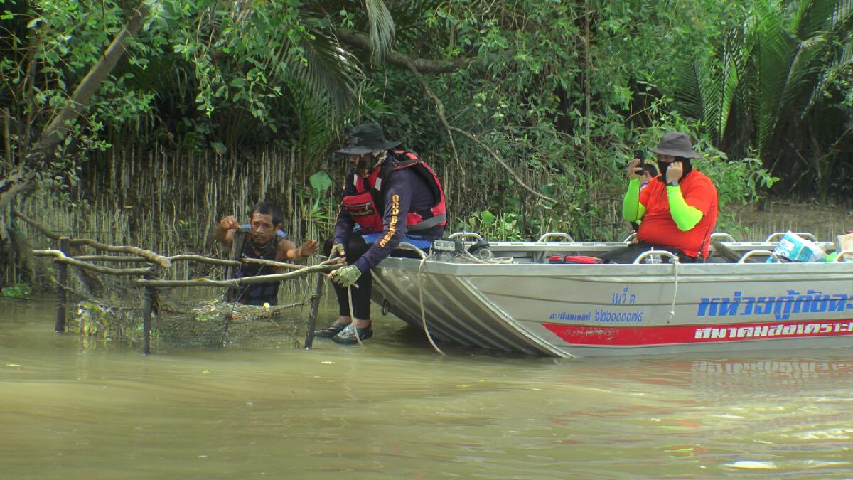 """ทีมล่า """"จระเข้"""" ในแม่น้ำบางปะกง คาดมีจระเข้มากกว่า 1 ตัว"""